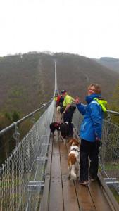 Geierlay hangbrug (foto AJ vd Willigen)